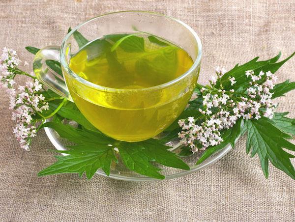 gyógynövény magas vérnyomás ellen)