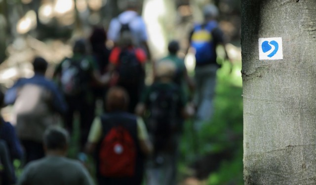 magas vérnyomás a hegyekben modern gyógyszerek magas vérnyomás ellen diabetes mellitusban