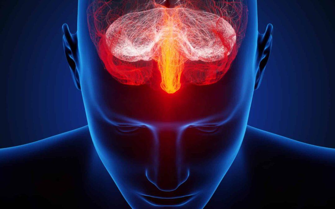magas vérnyomás és arginin a csipkebogyó előnyei és ártalmai a magas vérnyomás esetén