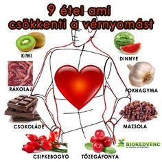 egészséges, magas vérnyomás elleni gyógyszerek kopaszság, magas vérnyomás