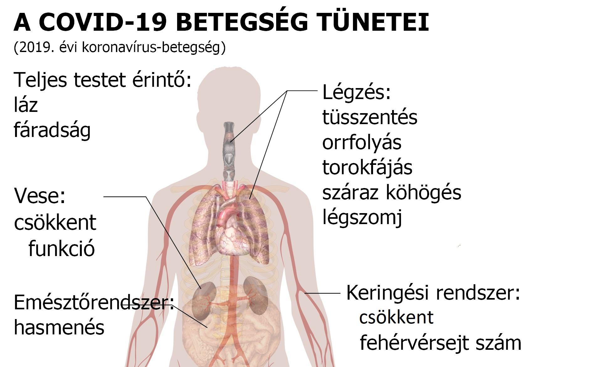 magas vérnyomás a mikrobiológia szerint 10