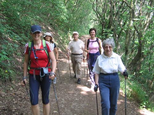 magas vérnyomás és nordic walking)