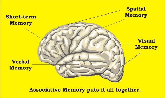 Civilizációs betegségek hatása az agyra