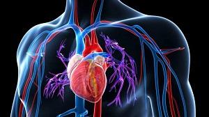 magas vérnyomás kezelése urolithiasisban)