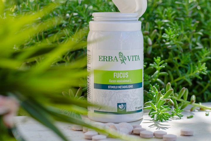 moszat alga magas vérnyomás ellen)