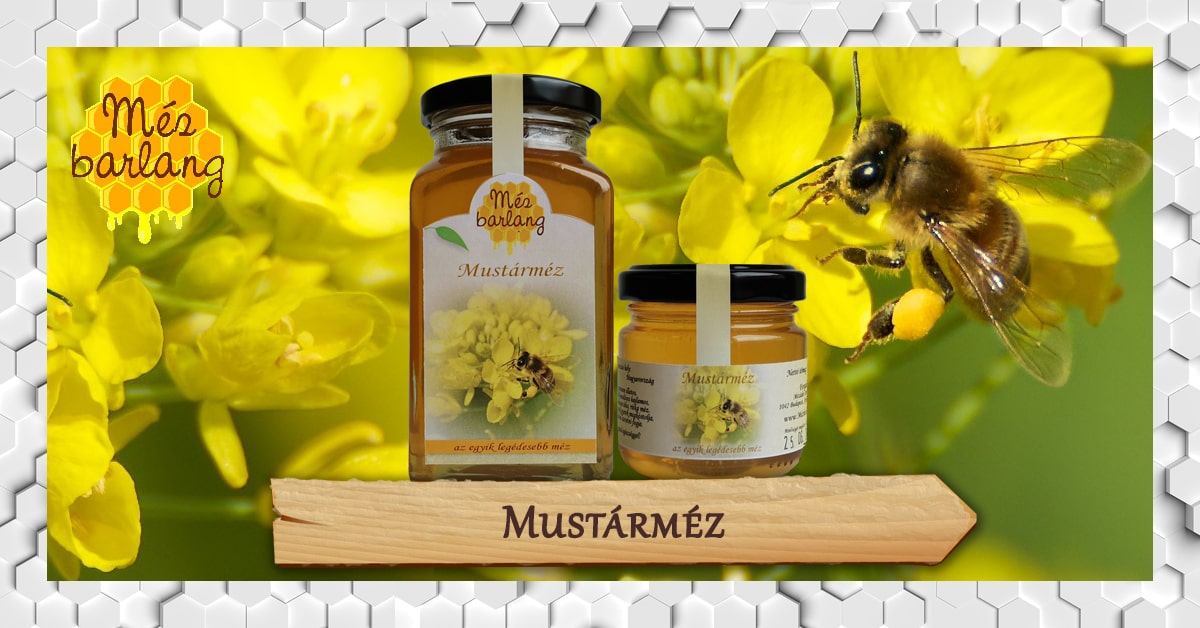 mezei méh a magas vérnyomásból alfa adrenerg blokkolók magas vérnyomás kezelésére