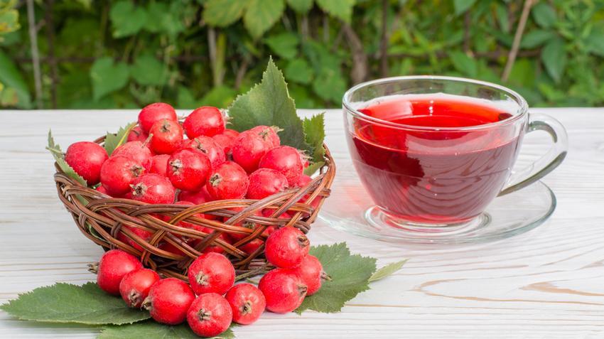 magas vérnyomás és gyógynövényes gyógyszerek)