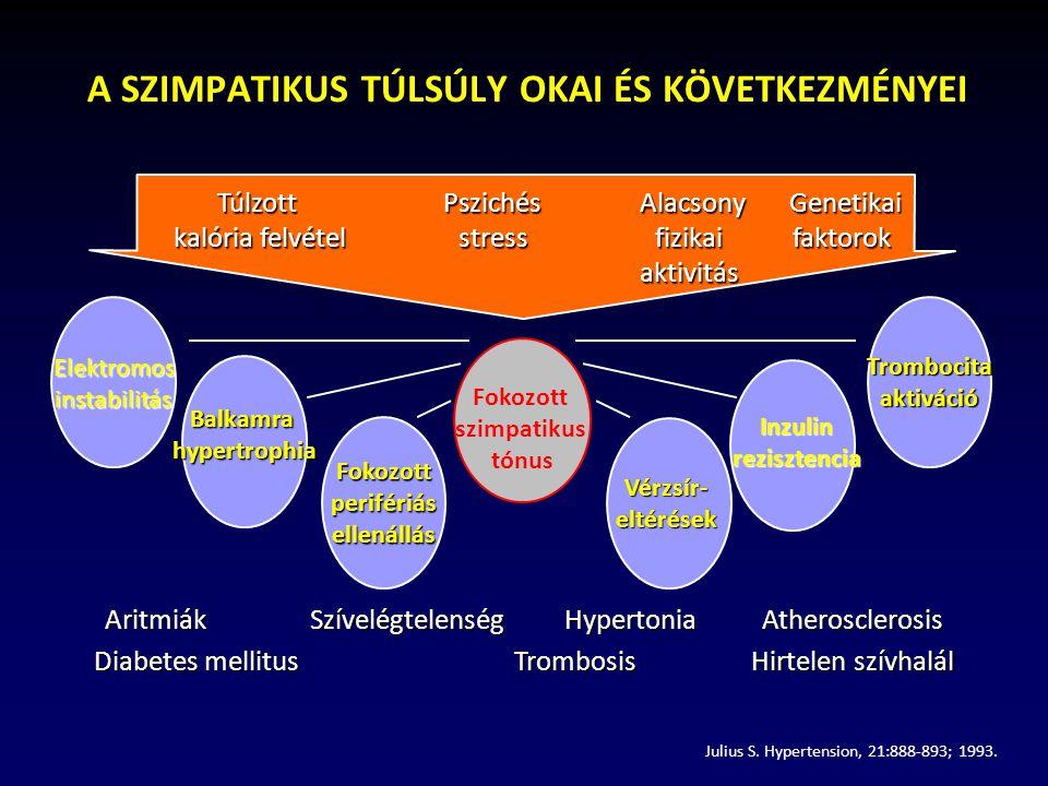 magas vérnyomás szimpatikus idegrendszer)