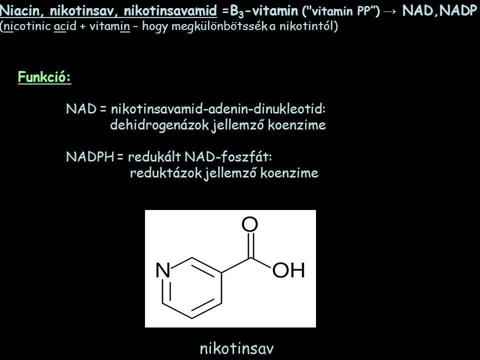 B3-vitamin (niacin) - Miért fontos?