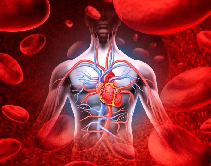 leo bokeria a magas vérnyomásról videó