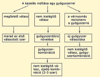 kalciumcsatorna-blokkolók magas vérnyomás esetén)
