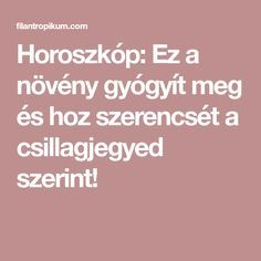 hipertónia növény képek)