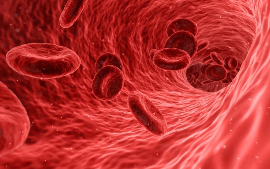 magas vérnyomás és vörösvértestek a vizeletben)