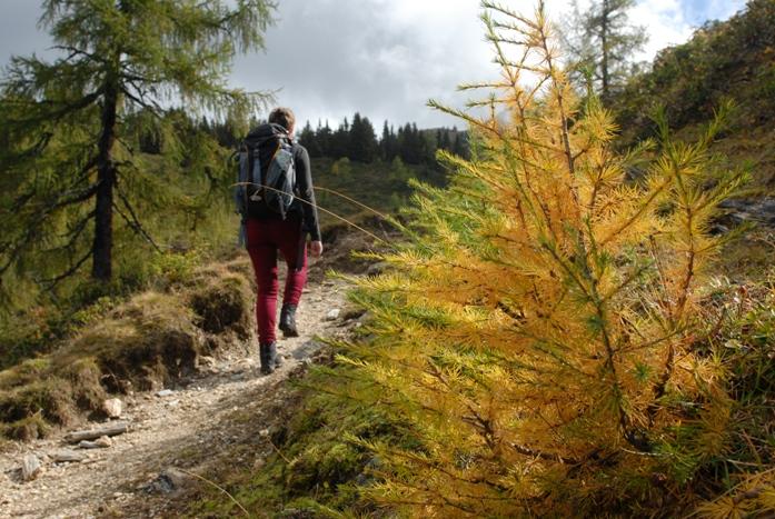 OTSZ Online - ESC Magas hegyhez magas vérnyomás jár