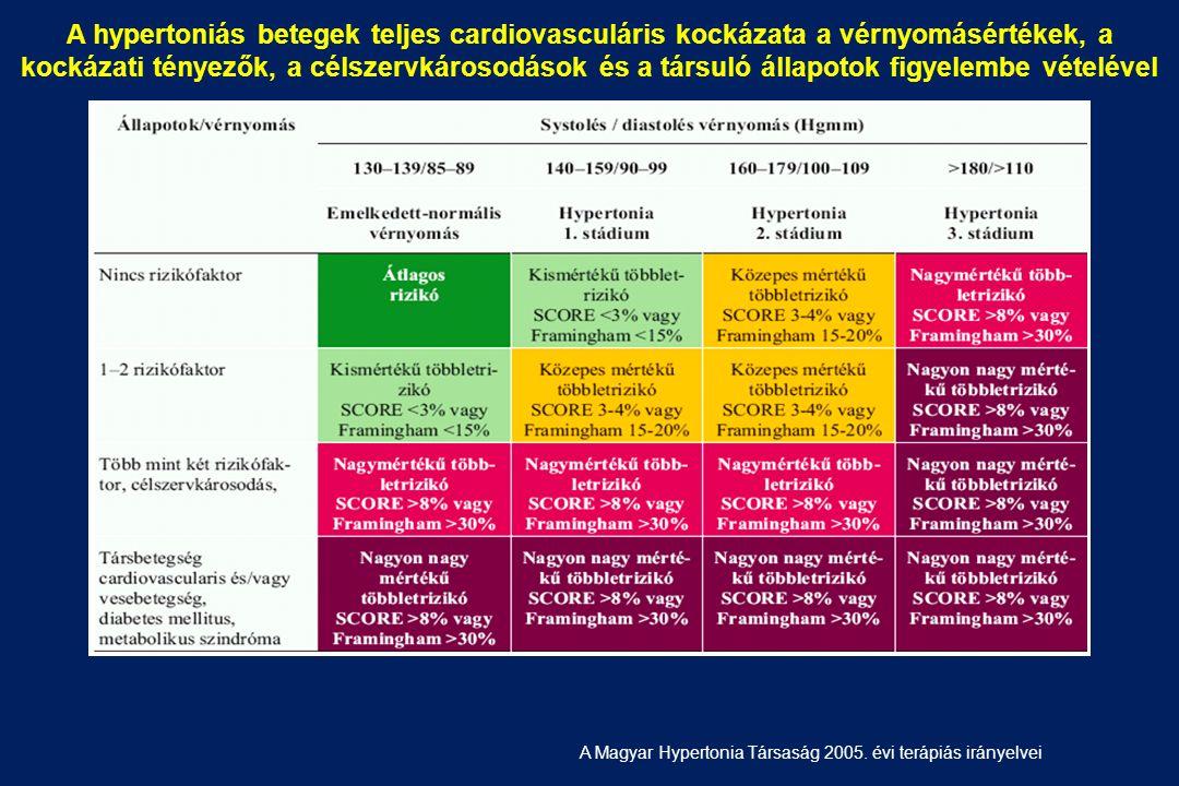 fogyatékosság magas vérnyomás 2 fokú kockázattal 3 magas vérnyomás részletesen