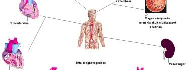 koenzim hipertónia