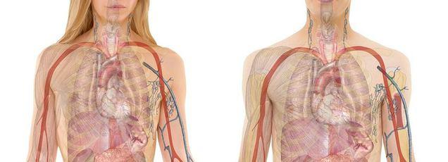 a pulmonalis hipertónia okai