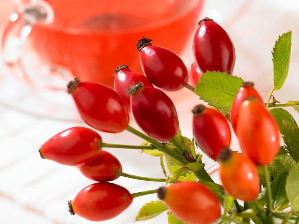 csipkebogyó tulajdonságai magas vérnyomás esetén)