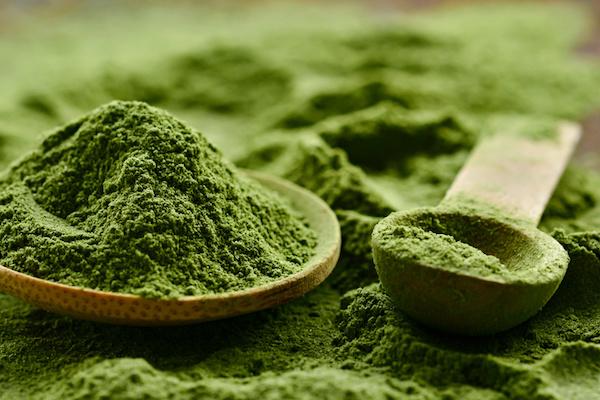 alga gyógyszer magas vérnyomás ellen