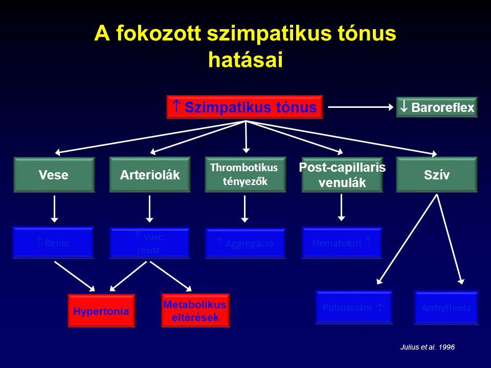 Agyi artériás hipertónia