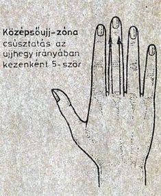 physo magas vérnyomásban)