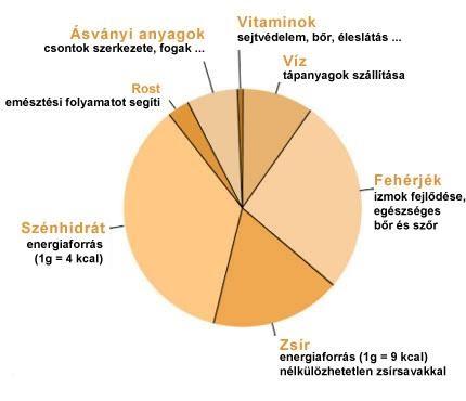 Szimpatika – Görögdinnyével a magas vérnyomás ellen