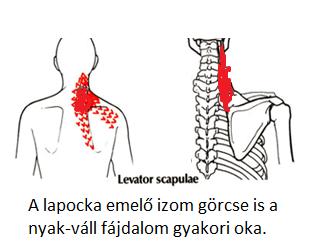 magas vérnyomás fájdalom a lapockában)