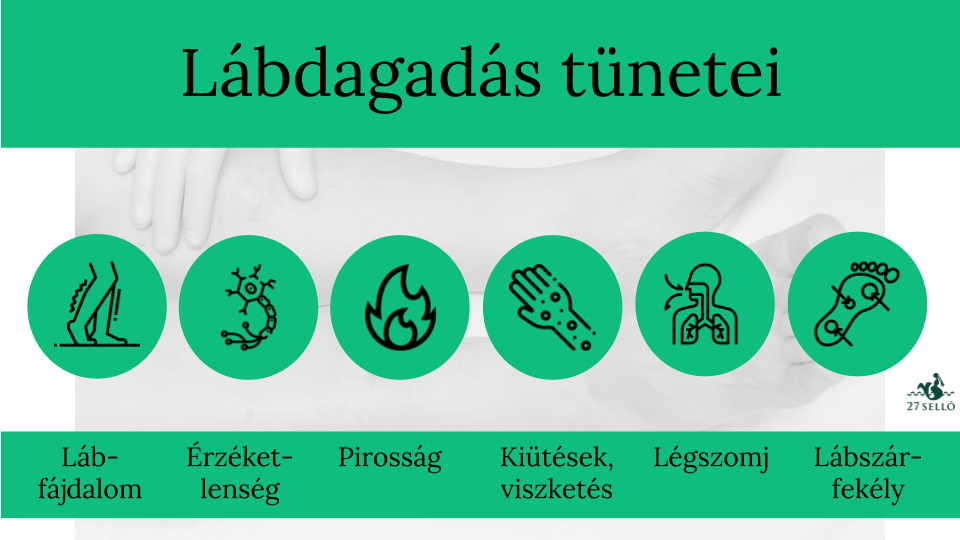 EDNYT 5 mg tabletta - Gyógyszerkereső - Hárockwellklub.hu
