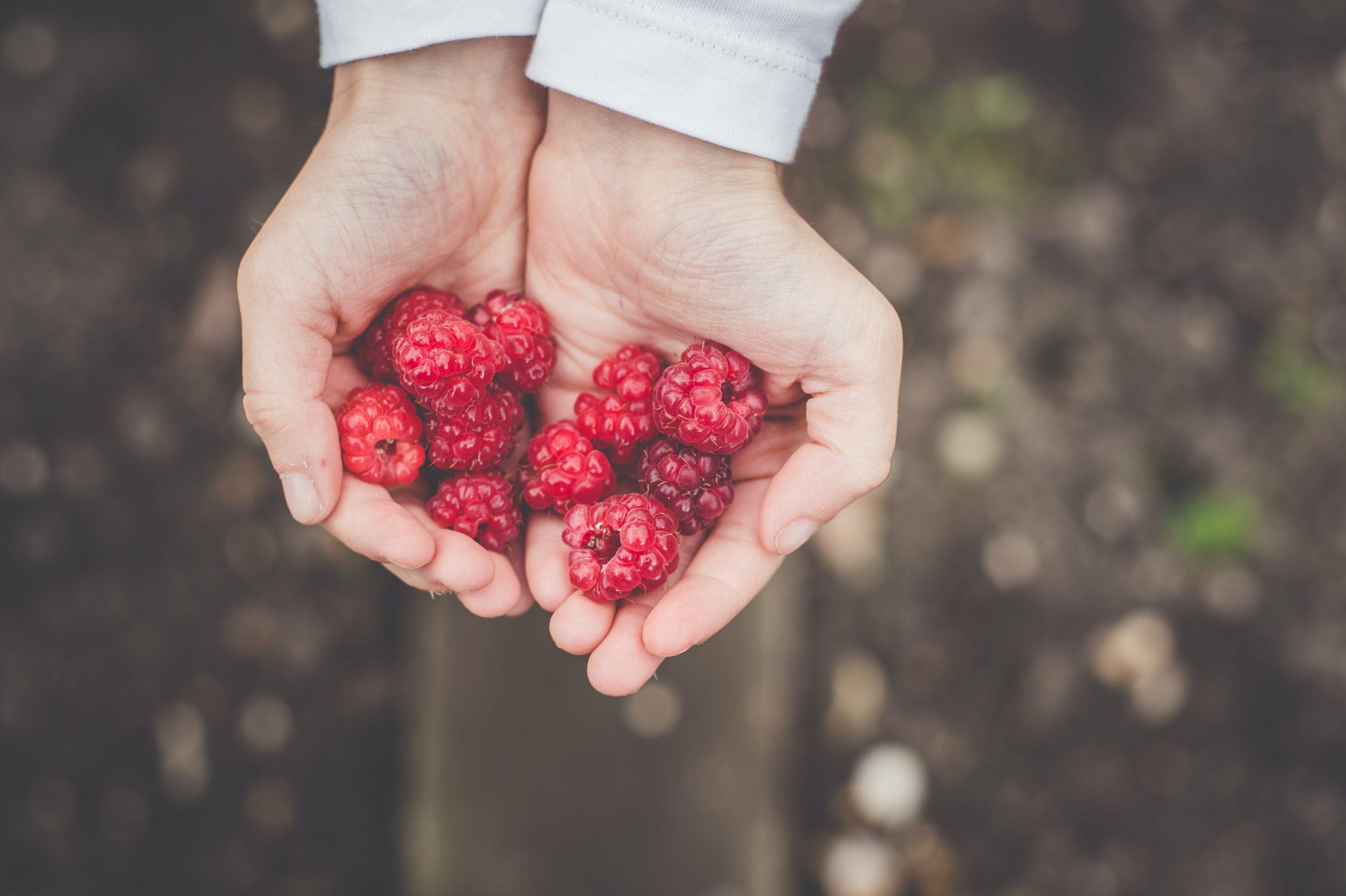 édesség magas vérnyomás ellen a magas vérnyomás fizioterápiája 2 fok