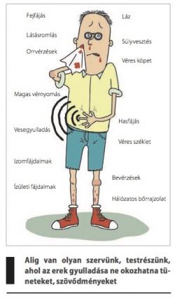 magas vérnyomás és a belső szervek betegségei)