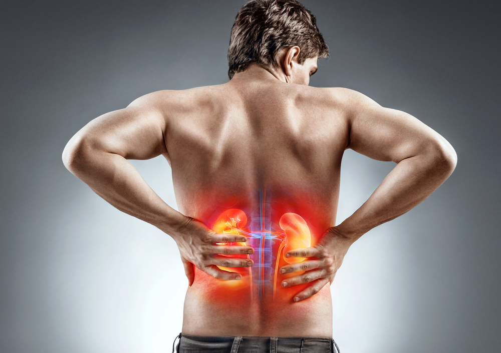 hogyan kell kezelni a vese miatti magas vérnyomást)