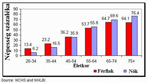 Feszülő erek (1.) - A magas vérnyomás és szövődményei