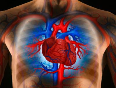 Magyas vérnyomás - Magas vérnyomás (Hipertónia)
