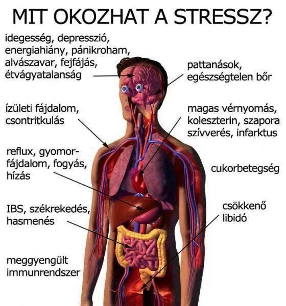 Magas vérnyomás (hypertonia) tünetei, okai, kezelése