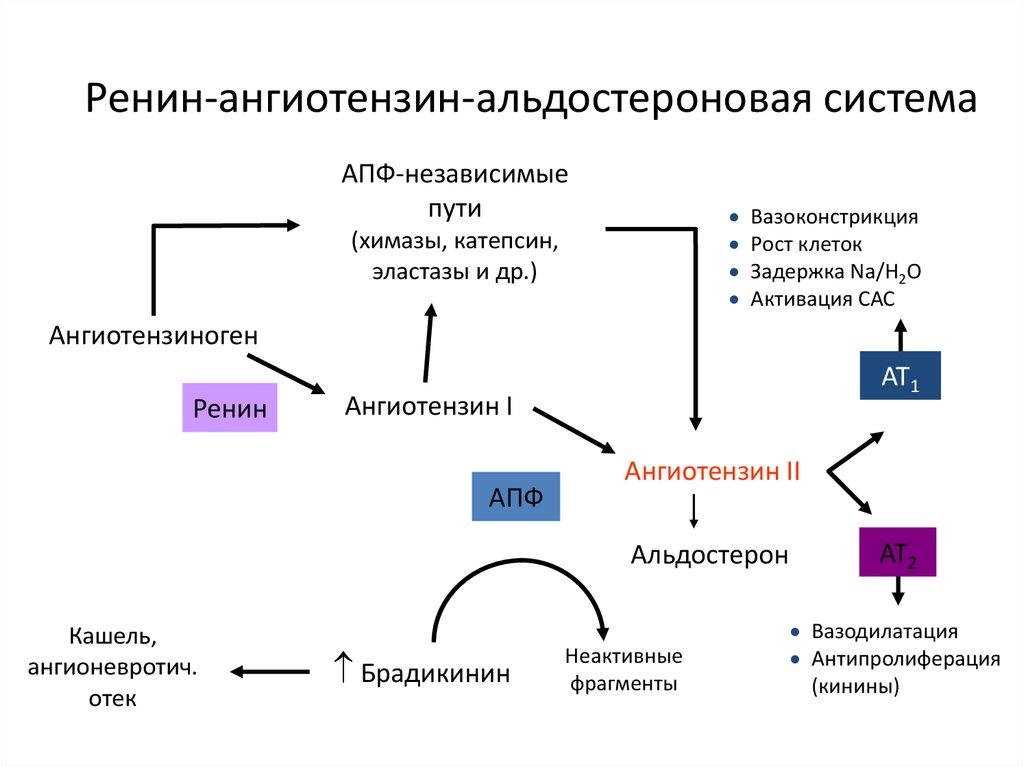 magas vérnyomás lehetséges-e csoportot szerezni)
