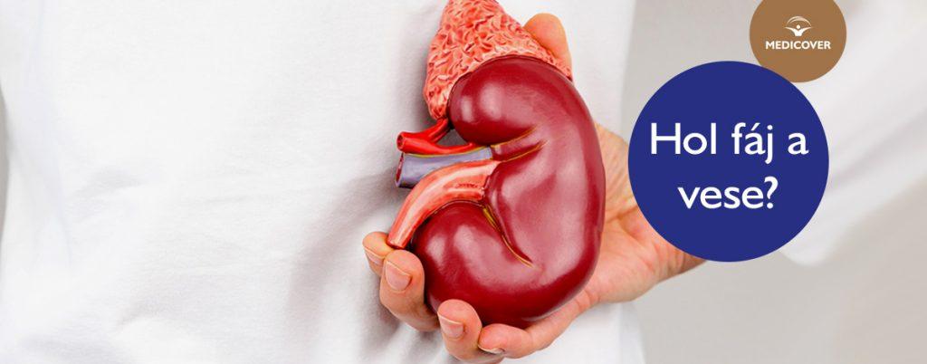 magas vérnyomás trigliceridek mentő magas vérnyomás elleni gyógyszerek