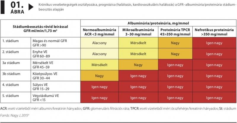 krónikus veseelégtelenség magas vérnyomással magas vérnyomásban szenved