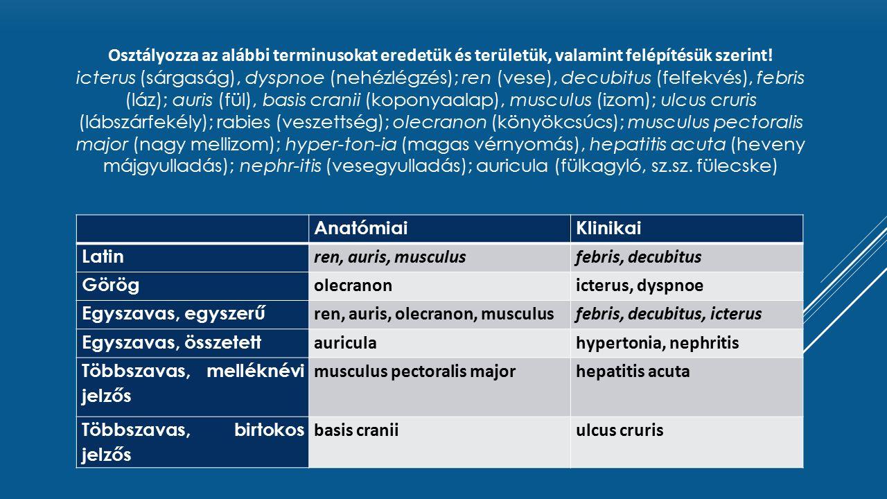 magas vérnyomás latinból)