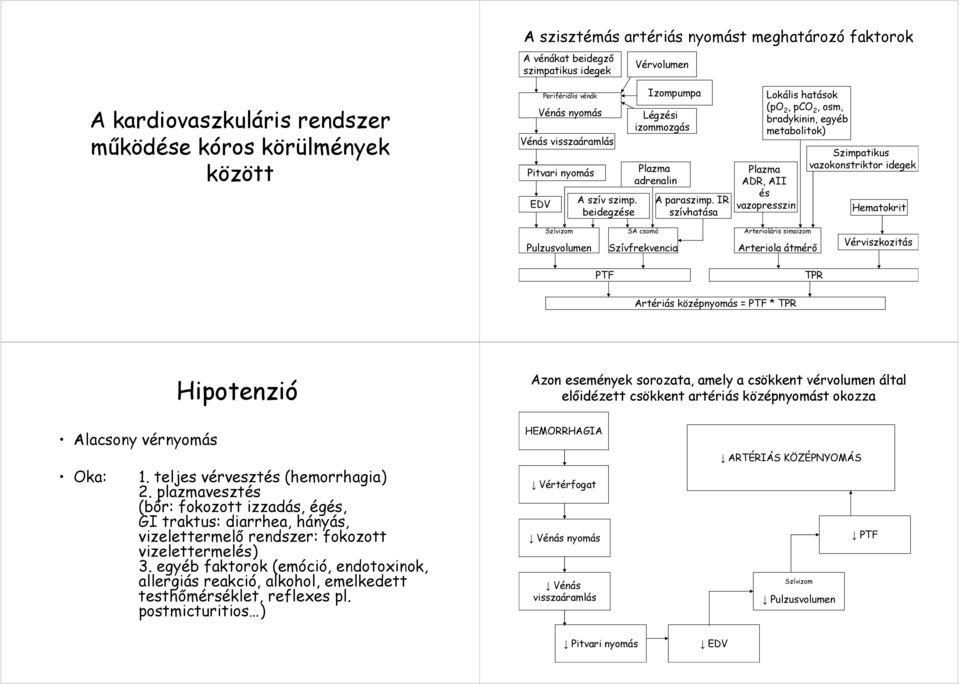a hipertónia hipotenzióba való átmenetének okai)