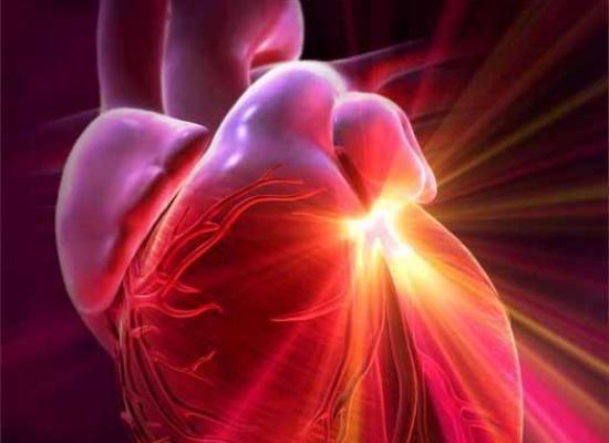 magas vérnyomás elleni halva hipertónia megelőzése képeken